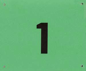 100 Startnummern Karton Grün